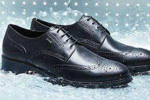Sztyblety, trapery i półbuty marki Geox - zimowe obuwie we włoskim stylu