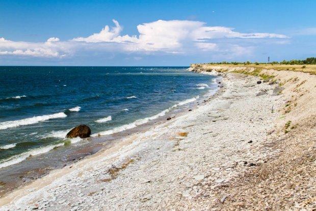 Estońska wyspa Vaike-Pakri/ Fot. Shutterstock