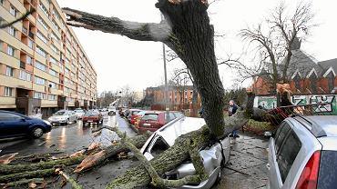 Zdjęcia mówią czasem więcej niż tekst. Te, które tutaj przypominamy, ilustrują rzeczy ważne i niezwykłe dziejące się w Szczecinie i regionie w 2019 r. To subiektywny wybór. Wydarzeń wartych odnotowania było znacznie więcej. Autorami fotografii są Cezary Aszkiełowicz i Krzysztof Hadrian. Na zdjęciu powyżej: 4 marca. Silny wiatr przewrócił drzewo na samochód parkujący na ul. Unisławy