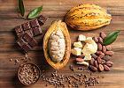 Kakao: właściwości zdrowotne. Dlaczego warto pić kakao?