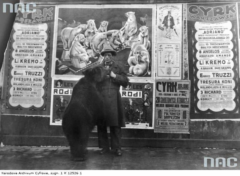 duże czarne osły z getta