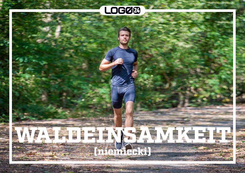 Waldeinsamkeit (niemiecki) - niebywale przyjemne uczucie towarzyszące samotnemu pobytowi w lesie, np. podczas biegania