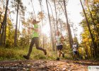 Maraton Kampinoski, Półmaraton po Katowickich Lasach, City Trail i Kielecka Dycha [BIEGOWY WEEKEND]