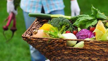 Wsezonie starajmy się jak najczęściej kupować warzywa i owoce bezpośrednio na wsi. Prosto od rolnika! Albo hodować na własnej działce, tarasie, balkonie lub... choćby wdoniczce.
