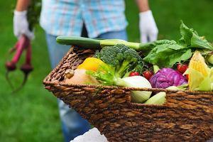 Warzywa W Doniczce Wszystko O Gotowaniu W Kuchni Ugotujto