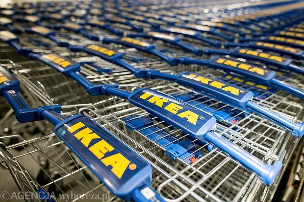 Zakaz handlu w niedzielę - IKEA
