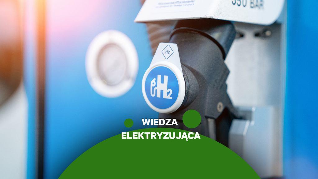 Samochody wodorowe, Wiedza Elektryzująca