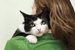 szalony kot dama randki internetowe niesłyszące aplikacje randkowe