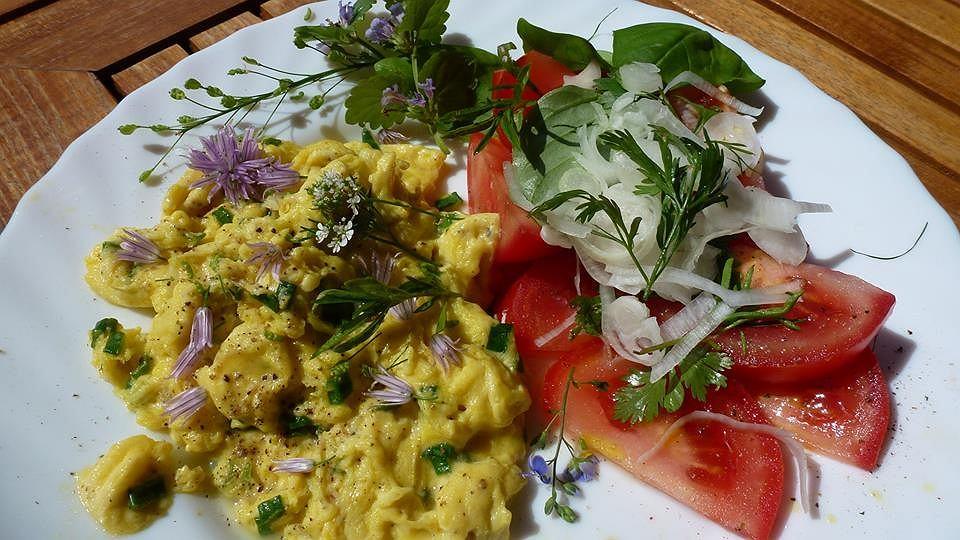 Lanczowy omlet z sałatką z pomidorów z szalotką, z jadalnymi pędami i kwiatami dzikich roślin