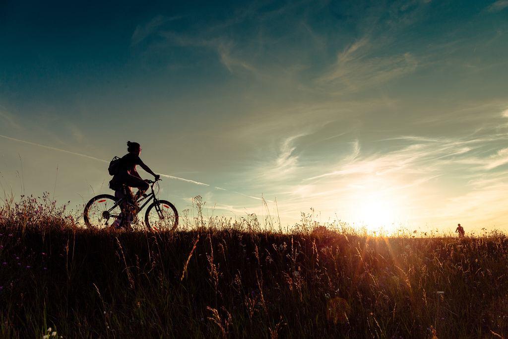 szlak rowerowy (zdjęcie ilustracyjne)