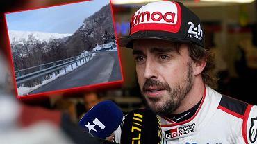 Fernando Alonso miał wypadek