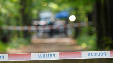 Tragiczny finał poszukiwań 11-letniej Kristiny. Jej ciało znaleziono w lesie (zdj. ilustracyjne)