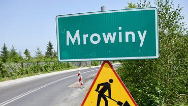 Morderstwo 10-latki z Mrowin