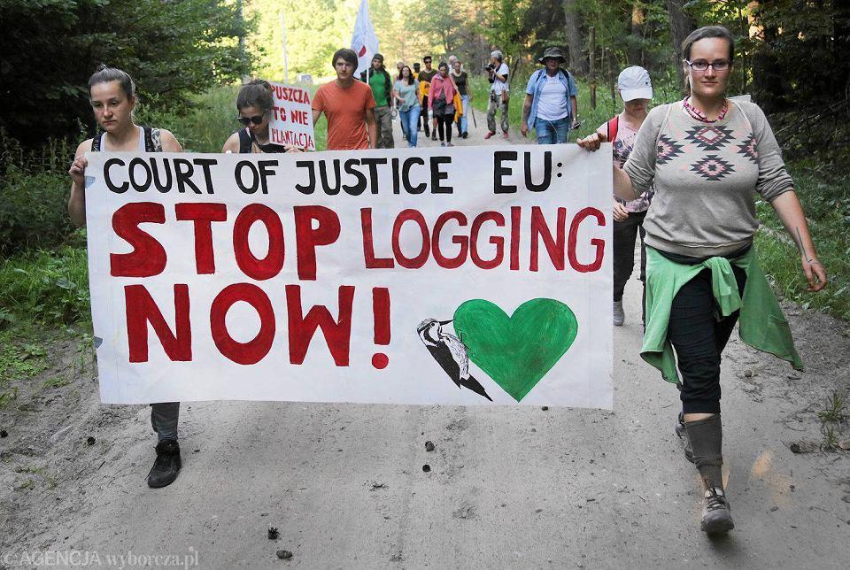 Zdjęcie numer 2 w galerii - Ekolodzy blokują Dyrekcję Generalną Lasów Państwowych