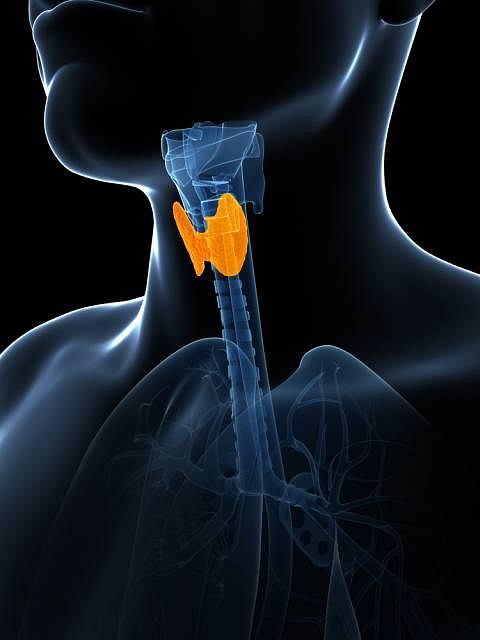 Zdaniem badaczy terapia z wykorzystaniem jadu 131 J to jedna ze skuteczniejszych metod leczenia chorób tarczycy