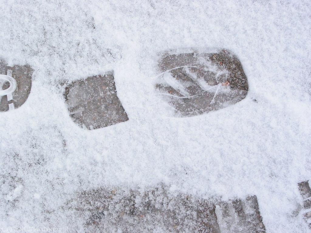 Ślady na śniegu / zdjęcie ilustracyjne