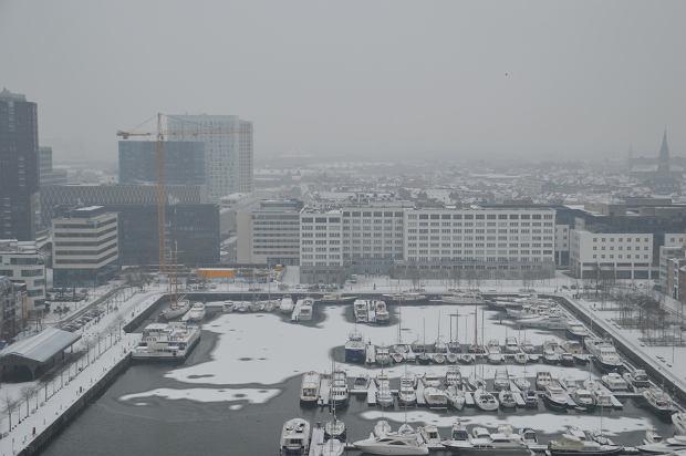 W Belgii spadł nietypowy śnieg. Z czego wynika to zjawisko?