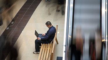 Osoba korzystająca z laptopa (zdjęcie ilustracyjne)
