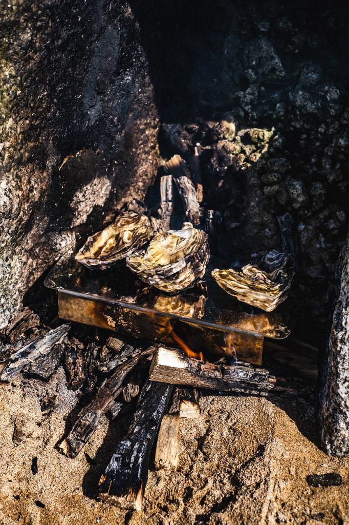 Kornwalia; ostrygi pieczone nagrillu na plaży wRock