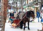 Ferie 2015 na nartach: co robić po zejściu ze stoku? [Zakopane, Słowacja, Austria, Szwajcaria, Włochy]