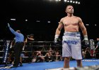Adamek - Molina NA ŻYWO w Polsat Boxing Night! Transmisja TV, Stream online w ipla.tv. Karta Walk
