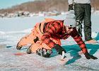 Curling, czyli zimowy sport olimpijski. Czy możemy uprawiać curling w Polsce?