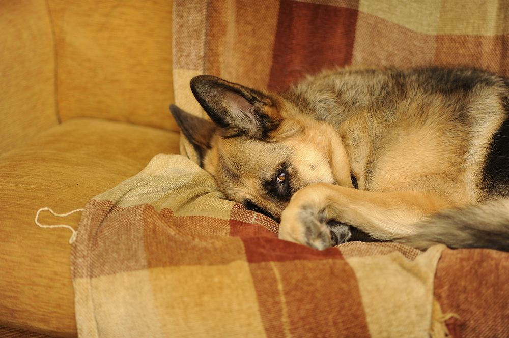 Czy stres wpływa na sen?