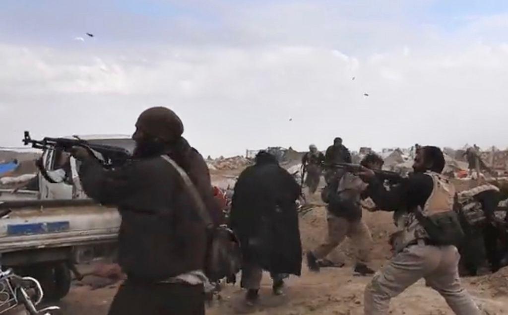 Bojownicy tzw. Państwa Islamskiego