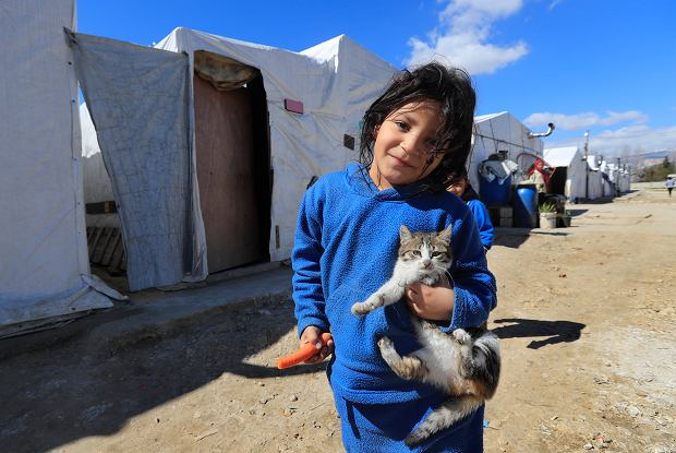 A displaced Syrian girl holds her cat, as she walks on an unpaved street at a refugee camp in Bar Elias, Bekaa Valley, Lebanon, Friday, March 5, 2021. UNICEF said Wednesday, March 10, 2021 that Syria