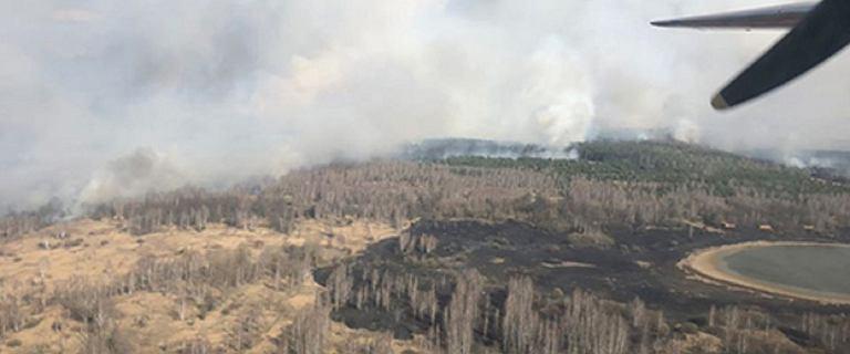 Pożar w strefie czarnobylskiej. Akcja utrudniona ze względu na promieniowanie