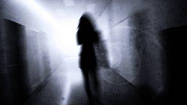 Paranoja może mieć różnoraki charakter, np. prześladowczy (podejrzewanie i śledzenie spisków i podstępów, których ofiarą jest sam chory), wielkościowy (przekonanie o własnych niezwykłych zdolnościach, talentach)