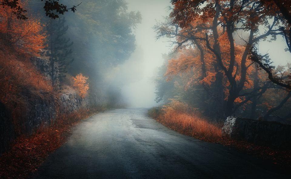 Gdy odchodzi bliska osoba, od razu trzeba zająć się jej pochówkiem - czas na przeżywanie żałoby przychodzi później.