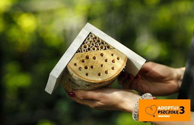 Domek dla pszczół samotnic