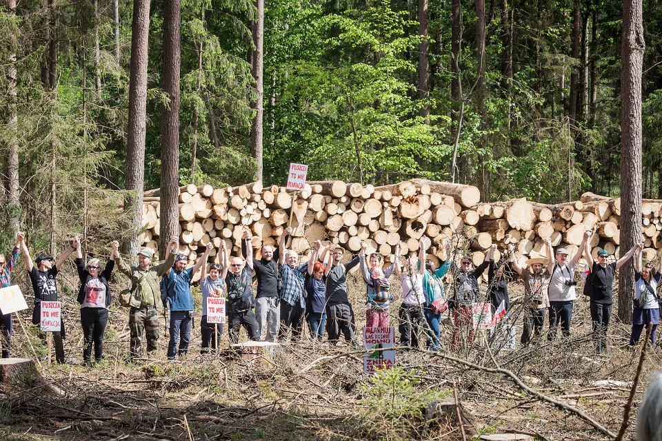 Zdjęcie numer 8 w galerii - W obozie obrońców Puszczy Białowieskiej - bez alkoholu, przeklinania, palenie tylko za stodołą