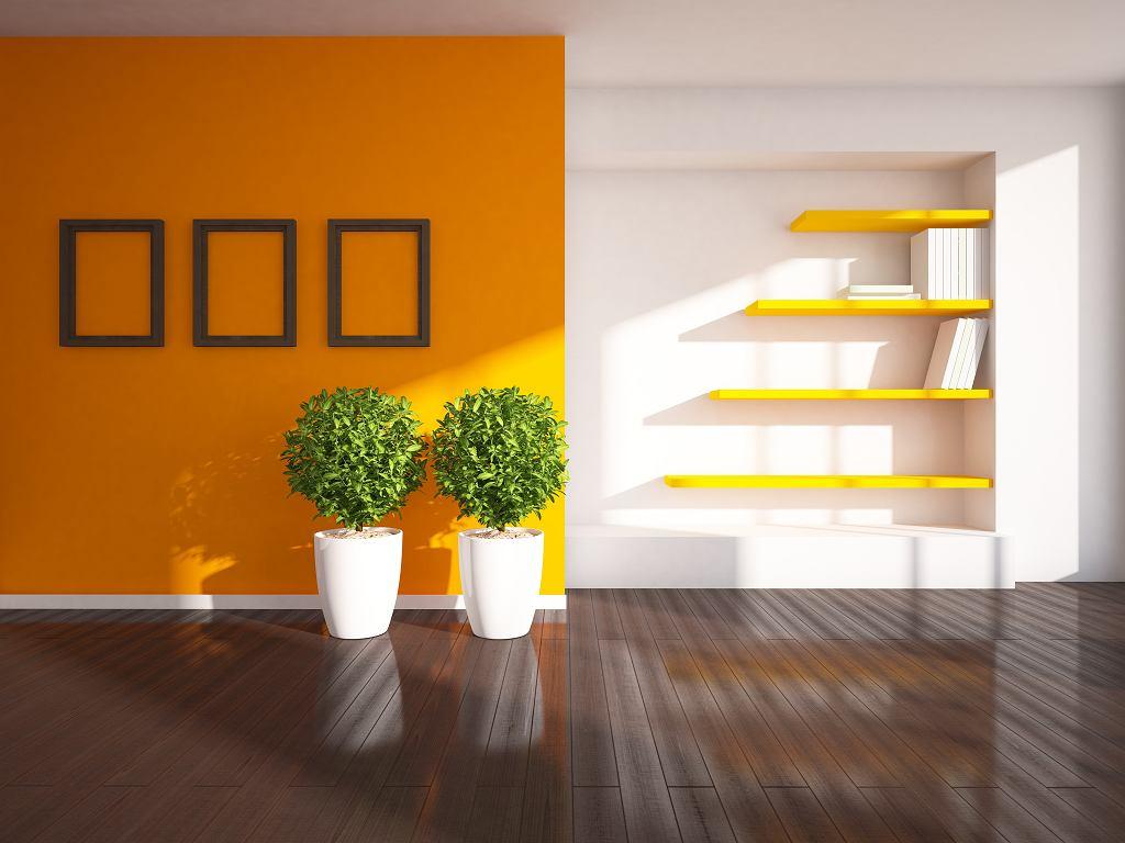 Które mieszkania są słoneczne?