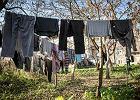 Proszek do prania domowej roboty - fanaberia czy najzdrowsze rozwiązanie? 3 najlepsze przepisy
