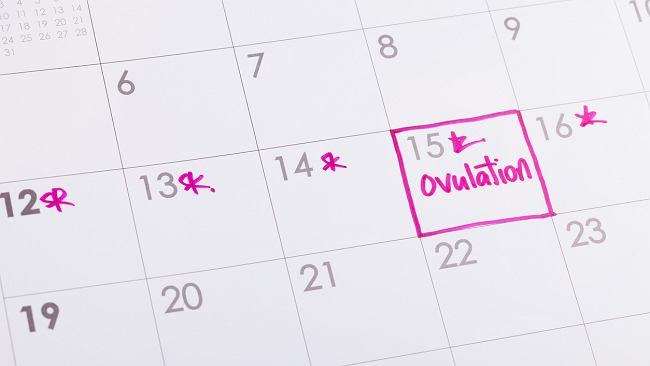 Kalendarzyk dni płodnych i niepłodnych