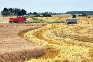 Firmy doradcze wyłudzały miliony złotych, pozorując pomoc rolnikom