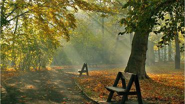 Park Miejski jesienią