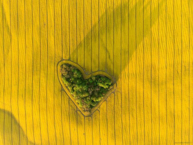 Zagajnik miłości to miejsce, które cieszy się ostatnio coraz większą popularnością