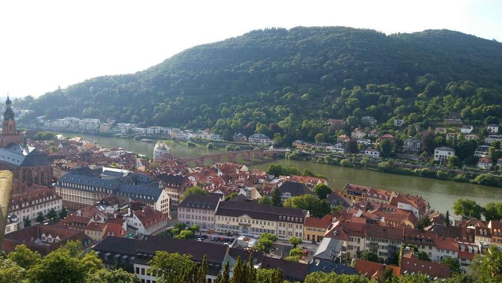 Nic nie równa się z widokiem z najwyższego punktu ogrodu Heidelberger Schloss rozciągającego się na rzekę Neckar i całe stare, i nowe miasto, otulone z lewej strony Schwarzwaldem - Czarnym Lasem