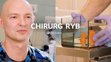 Zwykli niezwykli - chirurg ryb