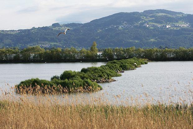 Jezioro Bodeńskie / fot.Stefan Munder/CC/Flickr.com