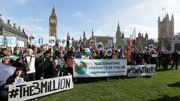 Demonstracja mieszkających w Wielkiej Brytanii obywateli UE