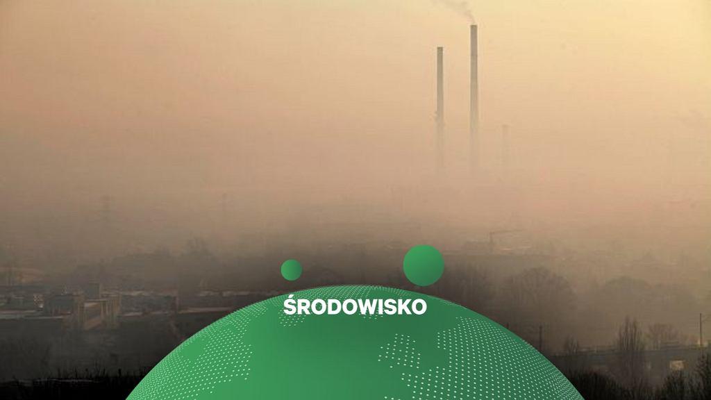 Greenpeace podliczył straty ekonomiczne i zdrowotne z powodu zanieczyszczenia powietrza