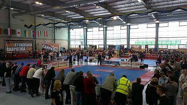 Zawody karate w Rzeszowie
