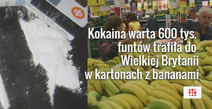 Przemytnicy ukryli kokainę w kartonach z bananami