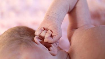 noworodek (zdjęcie ilustracyjne)