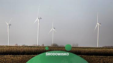 PSE: W piątek w Polsce padł rekord generacji prądu ze źródeł odnawialnych