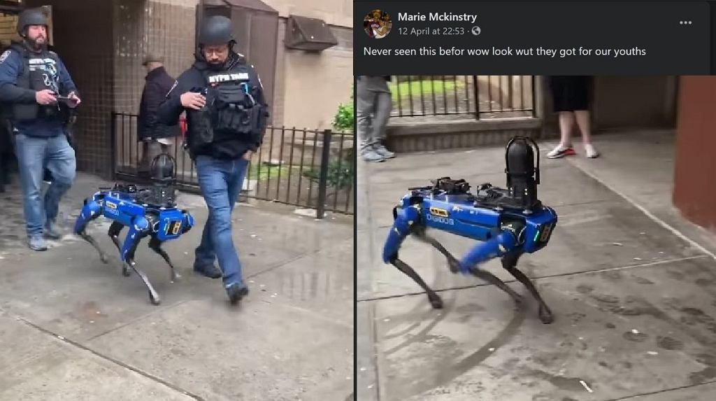 Pies-robot w nowojorskim departamencie policji